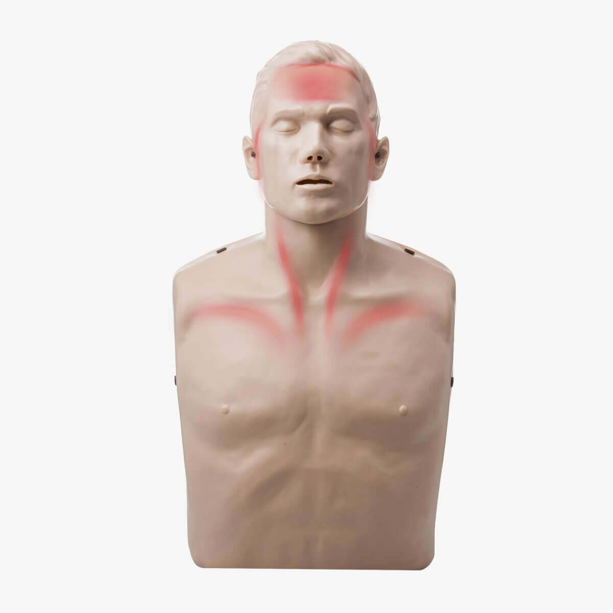 Brayden Übungspuppe für die Herz-Lungen-Wiederbelebung mit LED-Visualisierung der Blutzirkulation